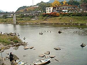 2008大分2・山国川1.JPG