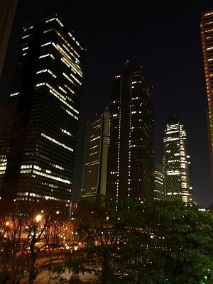20110226東京3-8.jpg