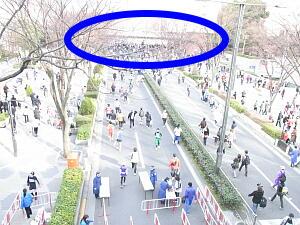 2011227東京4-5.jpg