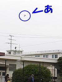 20101113春日2-1.jpg