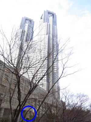2011227東京4-7.jpg
