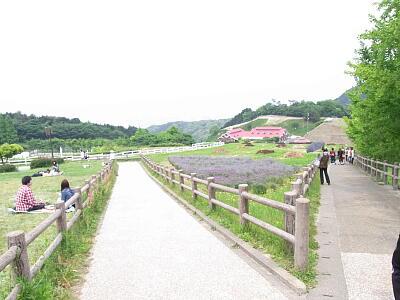 20120519 風景2.jpg
